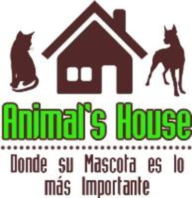 Clinica Veterinaria Arca de Noe - Home | Facebook